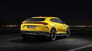 Обои Lamborghini Желтый Вид Urus 2018 Автомобили