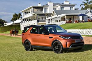 Обои Range Rover Оранжевый 2017 Discovery  First Edition Авто