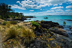 Обои Новая Зеландия Побережье Небо Облака Rangitoto Island Природа картинки
