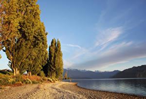 Картинки Новая Зеландия Озеро Осенние Деревья Lake Wanaka Природа