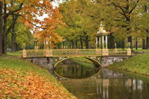 Картинка Россия Санкт-Петербург Парки Пруд Мосты Осень Pushkin