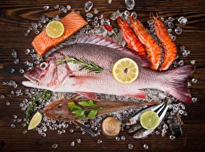 Картинка Морепродукты Рыба Креветки Лимоны Лед Еда