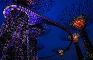 Картинка Сингапур Сады Дизайн Ночь Gardens by the Bay
