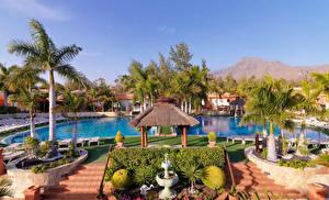Фотографии Испания Курорты Канарские острова Плавательный бассейн Пальмы Tenerife Природа