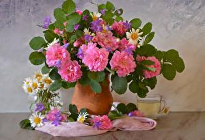Фото Натюрморт Розы Ромашки Напитки Ваза Чашка Цветы