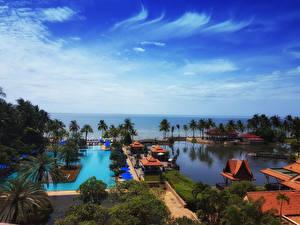 Фотография Таиланд Курорты Тропики Берег Плавательный бассейн Пальмы Cha-am Phetchaburi