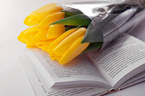 Картинка Тюльпаны Букеты Желтый Книга