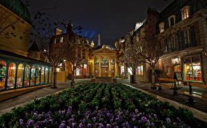 Фото Америка Диснейленд Парк Здания Фиалка трёхцветная Калифорнии Анахайм Улица Ночь HDRI Дизайна город