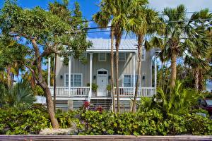 Картинка Штаты Здания Флорида Особняк Пальмы Key West