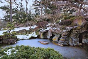 Фотография США Парки Ручей Снег Brooklyn Botanic Garden