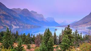 Картинка Штаты Парк Озеро Горы Ели Glacier National Park Природа