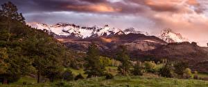 Фото Штаты Пейзаж Горы Деревья Ель San Juan Mountains Colorado Природа