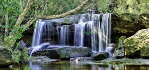 Обои Австралия Водопады Камень HDR Мох Ветки Jenolan Caves Blue Mountains Природа
