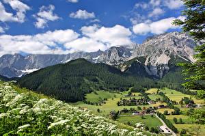 Фотография Австрия Горы Леса Здания Пейзаж Облака Ramsau am Dachstein Styria Природа