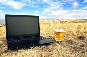 Фотография Пиво Поля Ноутбуки Кружка Компьютеры
