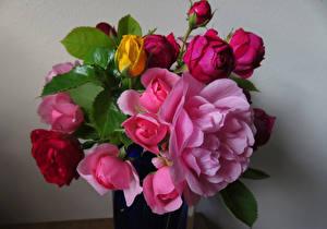 Фотографии Букеты Розы