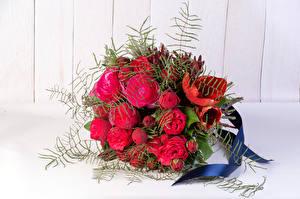 Картинки Букеты Розы Тюльпаны Красный Цветы