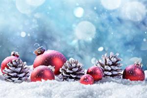 Фотографии Рождество Шар Шишки