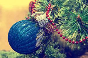 Фотографии Рождество Ветвь Шарики