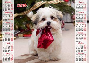 Картинка Новый год Собаки Календарь Болоньез Подарков 2018 Российские Животные