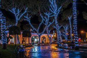 Обои Рождество Праздники Италия Здания Деревья Электрическая гирлянда Ночные Casamicciola