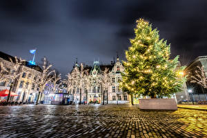 Обои Рождество Праздники Нидерланды Здания Городская площадь Новогодняя ёлка Электрическая гирлянда Ночные Hague