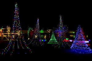 Фотографии Рождество Праздники Ночные Новогодняя ёлка Электрическая гирлянда