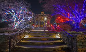 Фотографии Рождество Праздники Штаты Парки Лестница Деревья Гирлянда Лучи света Ночные Boylston Города