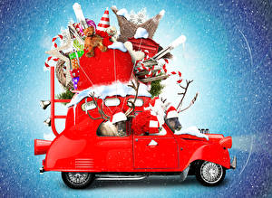 Фотографии Рождество Мишки Подарки Автомобили