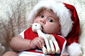 Фотографии Рождество Игрушка Младенец Шапки Взгляд Дети