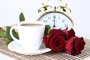 Фото Кофе Розы Часы Белым фоном Чашка Красных Цветы Еда