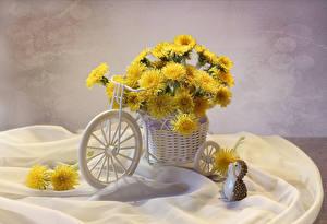 Обои Одуванчики Ежи Велосипед Корзинка Цветы