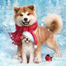 Фотографии Собаки Новый год Акита-ину Щенок Две Животные