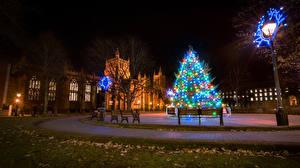 Картинка Англия Рождество Праздники Дома Новогодняя ёлка Ночь Уличные фонари Гирлянда Скамейка Bristol город