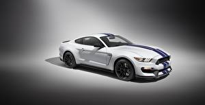 Картинка Форд Белый Mustang GT350 Shelby