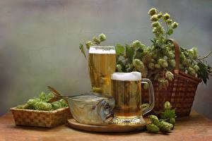Картинка Хмель Натюрморт Пиво Рыба Корзины Кружки Пеной Стакане Пища