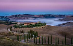 Фотография Италия Тоскана Дороги Поля Холм Тумана Деревья Природа
