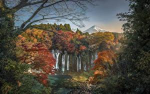Фотографии Япония Осенние Водопады Скала Shiraito Falls Природа