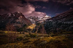 Фото Норвегия Горы Вечер Деревья Мох