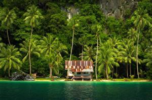 Обои Филиппины Побережье Здания Тропики Пальмы El Nido