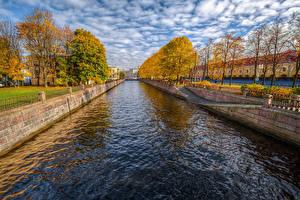 Фотография Россия Санкт-Петербург Осенние Водный канал Деревья Griboyedov Canal