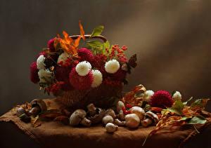 Картинка Натюрморт Астры Осенние Ягоды Грибы Корзинка Листва Цветы