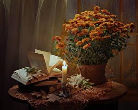Фотография Натюрморт Хризантемы Свечи Оранжевый Книга Цветы