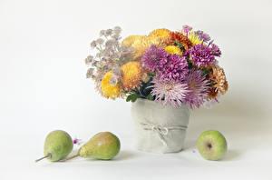Обои Натюрморт Хризантемы Груши Белый фон Ваза Цветы