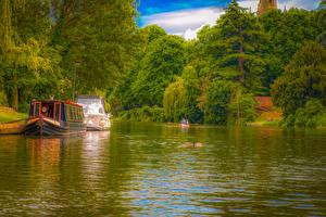 Фотография Великобритания Речка Причалы Катера Корабли Дерева Stratford Upon Avon Природа