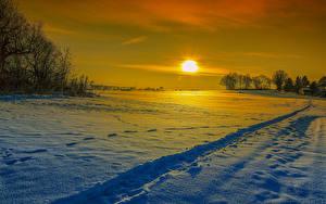 Фотография Зимние Рассветы и закаты Снег Солнце Природа
