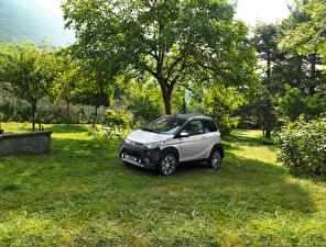 Фото Серебристая 2016-17 Aixam Crossline Premium машина