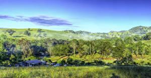 Обои Австралия HDRI Холмы Деревья Трава Little Hartley Природа