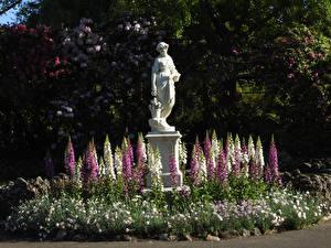 Картинки Австралия Парки Скульптура Наперстянка Ballarat Botanic Gardens Природа