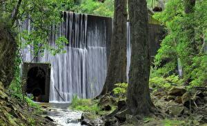 Картинка Австралия Водопады Камень HDRI Ствол дерева Мох Jenolan Caves Blue Mountains Природа